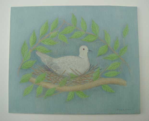 'Collard Dove' by Elizabeth Harbour - an original acrylic painting